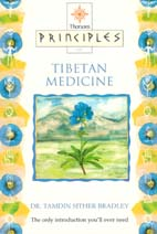 Principles of Tibetan Medicine by Dr Tamdin Sither Bradley